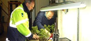 Douane fytosanitaire keuring